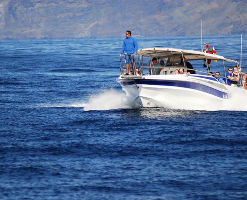 barco_avistamiento_cetaceos